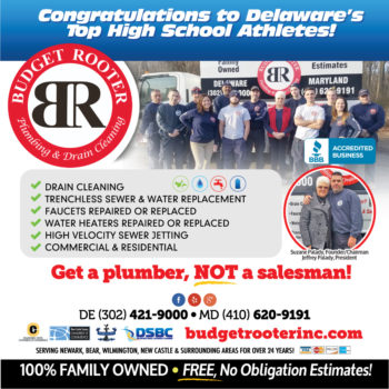 Budget Rooter Delaware News Journal Ad
